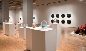 Fuzzy Logic exhibtion at Des Lee Gallery