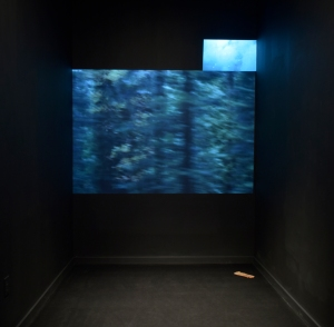 Michael Powell, A Copse of Trees, A Copse of Trees, digital video on loop, 2016;  A Cloud, The Universe, digital video on loop, 2016  :  Chris Thorson, Lost (Brown Leather with Ink Spot), oil and mixed media on Hydrocal, 2012